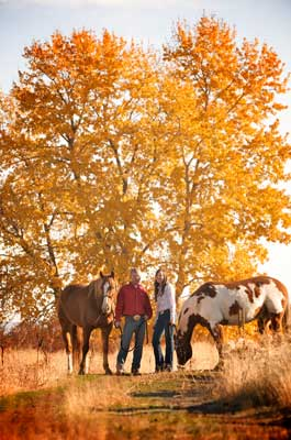 Horses in the fall